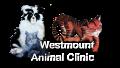 Westmount Animal Clinic logo