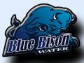 Blue Bison Water Treatment logo