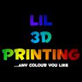 Lil 3D Printing logo