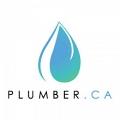 Milton Plumbers logo