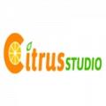 CitrusStudio logo