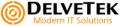 DelveTek Inc. logo