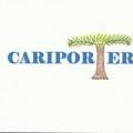 Cariporter Inc logo