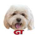 Game Trucks GT logo