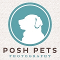 Posh Pets® Photography logo
